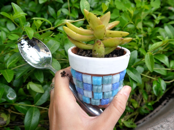 diy mosaic tile flower pot (because plants need to dress well, too ...